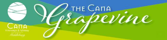 Cana Grapevine 02-28-2019
