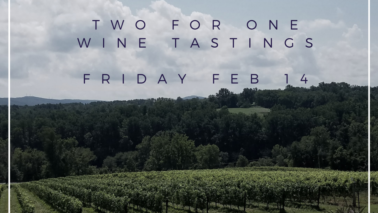 Valentine's 2 for 1 Wine Tasting